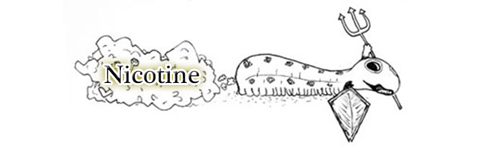 nicotine caterpillar