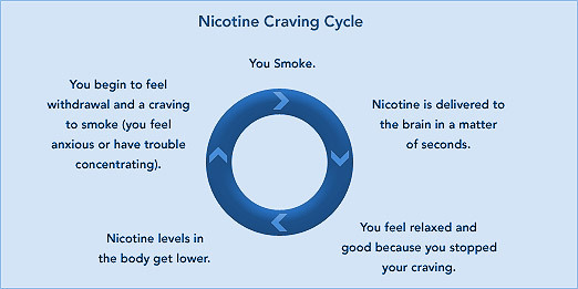 craving-cycle