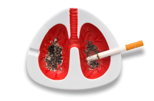 Lungs with a cigarette.a conceptual photo, directly above and close-up.