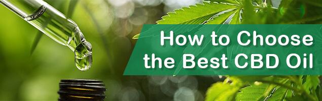 Choosing the best CBD Oil